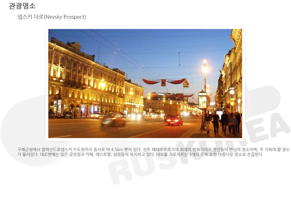 city_nevskyprospect.png